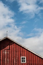 Barn Red (1 of 1)